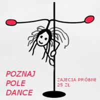pole dance mini